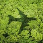 emirates--2013 Green-Flight_3D